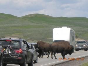 National Parks 2 687